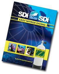 SDI_35_2